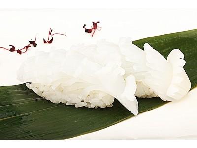SQUID (Nigiri or Sashimi)